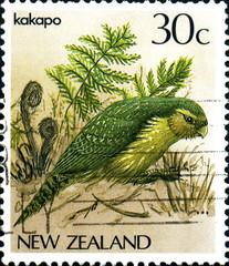 Kakapo New Zealand. Nouvelle zélande. Timbre postal.