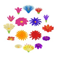 Detailed flowers icons set, cartoon style