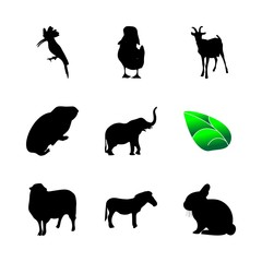 icon Animal with bird, lamb, sketch, hamster and zoology