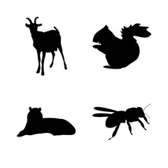 icon Animal with old, danger, bumble, antenna and humor