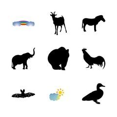 icon Animal with duck, bat, hen, safari and sun