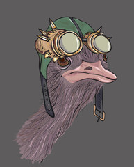 Ostrich dressed up in steampunk hat