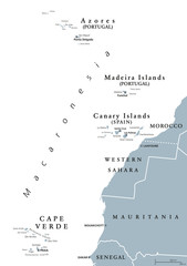 Macaronesia political map. Azores, Cape Verde, Madeira, Canary Islands. Collection of archipelagos in the Atlantic Ocean off the coast of Africa. English labeling. Gray illustration over white. Vector