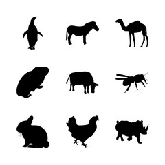 icon Animal with cock, pose, farming, background and ponny