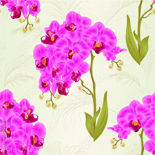 Seamless texture branches orchid phalaenopsis purple flowers and seamless texture branches orchid phalaenopsis purple flowers and leaves tropical plants stem and nature background vintage mightylinksfo