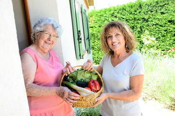 cheerful mature woman delivering an organic vegetable basket at home to an elderly senior woman
