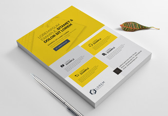 Yellow and White Flyer Layout
