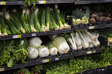 Isolated view of produce on shelf, green onions, radishes, spinach, beets, cabbage, kale, and cilantro