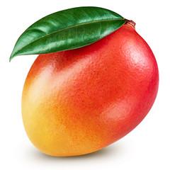 Mango leaf isolated