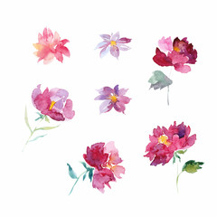 Handpainted floral set, Colorful floral collection with leaves and flowers,drawing watercolor, Colorful floral collection with flowers