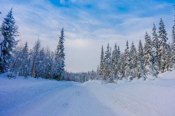 Outdoor view of winter road covered with heavy snow in pine tree in the forest
