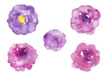 複数の紫の花 水彩イラスト