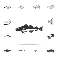 a fish icon. Detailed set of fish illustrations. Premium quality graphic design icon. One of the collection icons for websites, web design, mobile app
