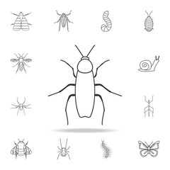 cockroach icon. Detailed set of insects line illustrations. Premium quality graphic design icon. One of the collection icons for websites, web design, mobile app