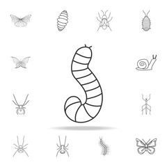 larva icon. Detailed set of insects line illustrations. Premium quality graphic design icon. One of the collection icons for websites, web design, mobile app