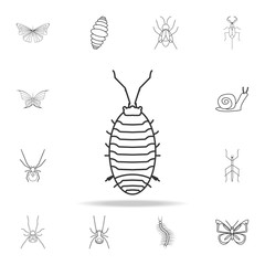 aphid icon. Detailed set of insects line illustrations. Premium quality graphic design icon. One of the collection icons for websites, web design, mobile app