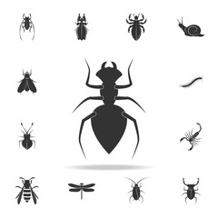 ant. Detailed set of insects items icons. Premium quality graphic design. One of the collection icons for websites, web design, mobile app