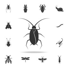 cockroach. Detailed set of insects items icons. Premium quality graphic design. One of the collection icons for websites, web design, mobile app