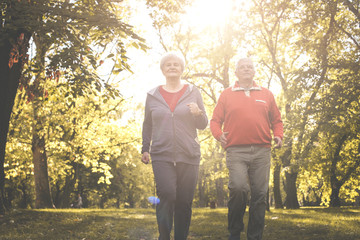 Seniors couple in sports clothing jogging together in park.