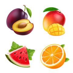 Fruits orange, plum, watermelon and mango set vector illustrations