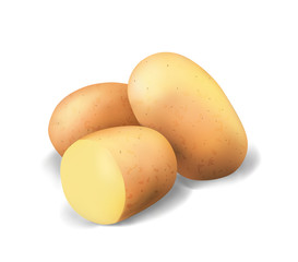 Potato isolated on white background. Realistic illustration. Vegetable 3d vector game icon