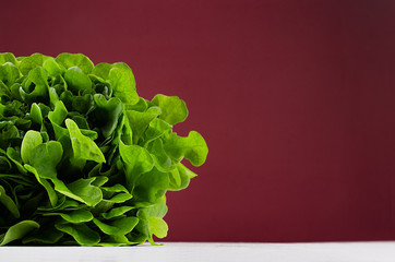 Green salad spinach on modern colorful bordo wall and white wooden board with copy space.