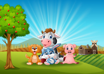 Little animals farm in the morning
