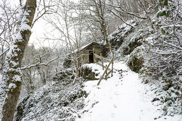 Abandoned house covered in snow