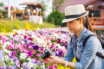 Traveller using camera take picture flower