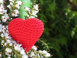 Love heart and white Heather flowers. Romantic background with free copy space. Red knitted symbol of love