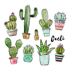 Assorted watercolor cactus collection