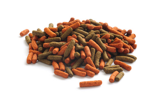 Fish feed isolated on white background. Fish food in form of red and green sticks for large aquarium and pond fish