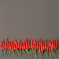 Line from small red hot chili peppers on gray concrete. Top view. Food background with copy space.