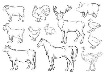Farm animals icons set. Collection of labels with beautiful such as goat chicken pig boar duck goose horse cow Turkey hare ostrich deer butcher shop, steak house. Vector illustration