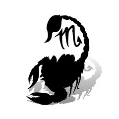 Black scorpion, zodiac sign, silhouette on white background with shadow,