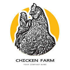 Portrait of a hen head. 
