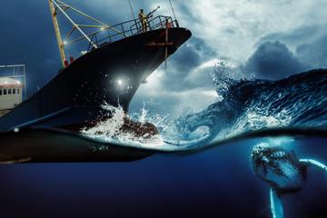 Walfänger auf der Jagd nach Buckelwal