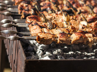 kebab on skewers - fried in open fire (barbecue, bbq)