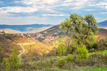 Spring is coming... / Amazing spring view with a little village in Rhodopi Mountains, Bulgaria