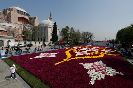 A huge carpet design formed by tulips is pictured with the Byzantine-era monument of Hagia Sophia at Sultanahmet square during the 13th Tulip Festival in Istanbul