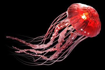 3d rendering of pink jellyfish floating in the dark blue ocean background with sunlight.
