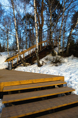 Wooden staircase in the spring park.