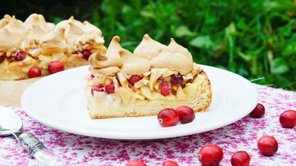 piece of short cake with apples and cranberries