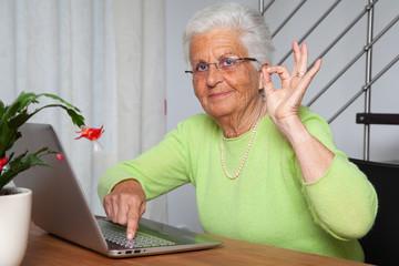nonna dice okay usando il computer