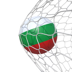 Bulgaria Bulgarian flag soccer ball inside the net, in a net.