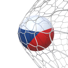 Czech Czechian flag soccer ball inside the net, in a net.