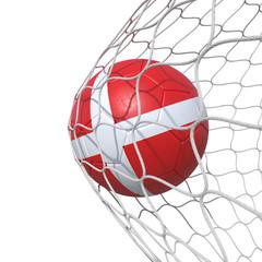 Denmark flag soccer ball inside the net, in a net.