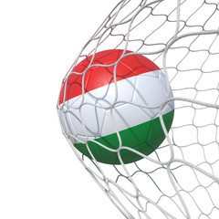 Hungary Hungarian flag soccer ball inside the net, in a net.