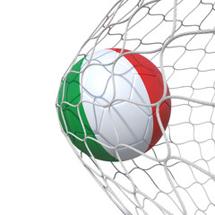 Italy Italian flag soccer ball inside the net, in a net.