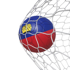 Liechtenstein flag soccer ball inside the net, in a net.